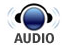 audio-bug