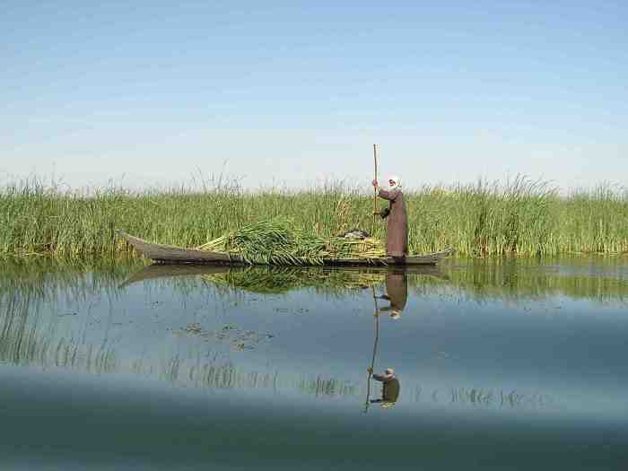 mesopotamian_marshes-nature_-iraq-sml