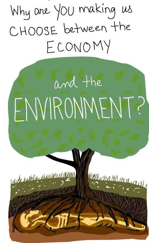 Essay on the ecomony and the enviroment