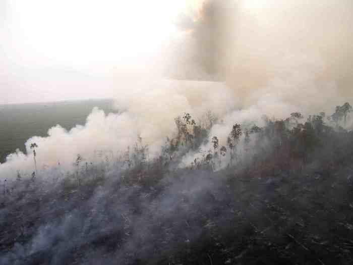 sumatra-burning-forest-courtesy-of-kim-worm-sorensen-sml