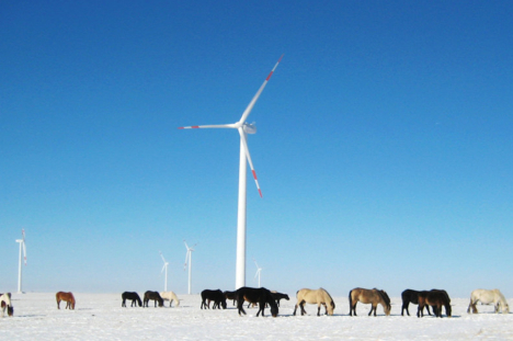 windmill-winter-ponies
