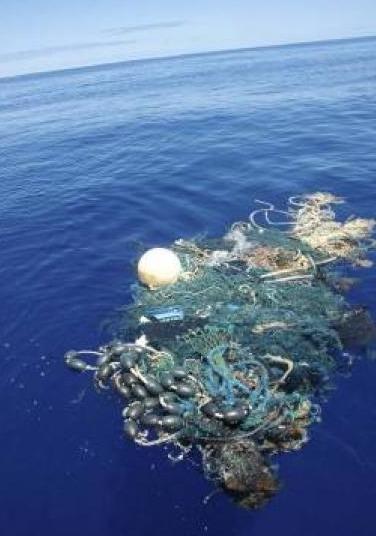 plastic trash - pacific gyre