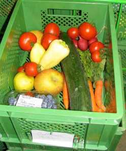 veg food basket