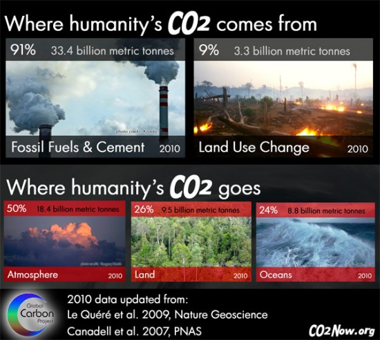 global-carbon-budget-2010-e1371236101998